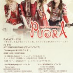 Pudra_flyer