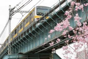 shoheibashi_train